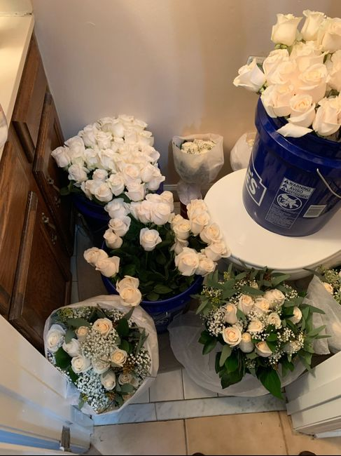 Sam's Club Flowers (picture Heavy) 4