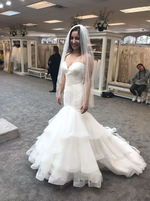 For 2019 and 2020 Brides who is done Dress Shopping? 4