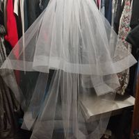 Veil! Not the best picture but it is perfect! Seller: MyJasmineCorner