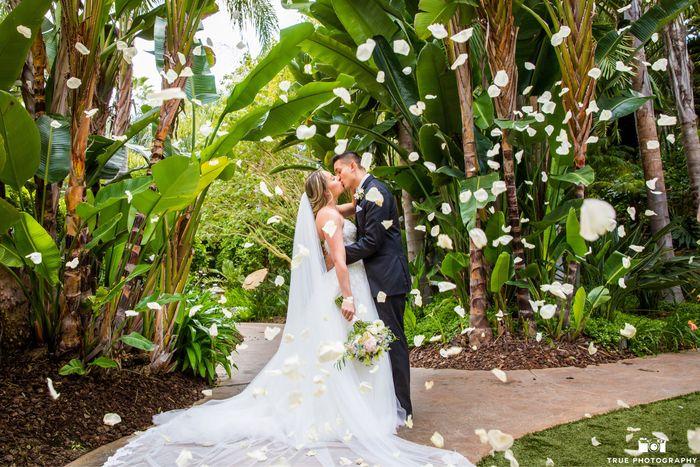 Pro Pics. My dream wedding was amazing 14