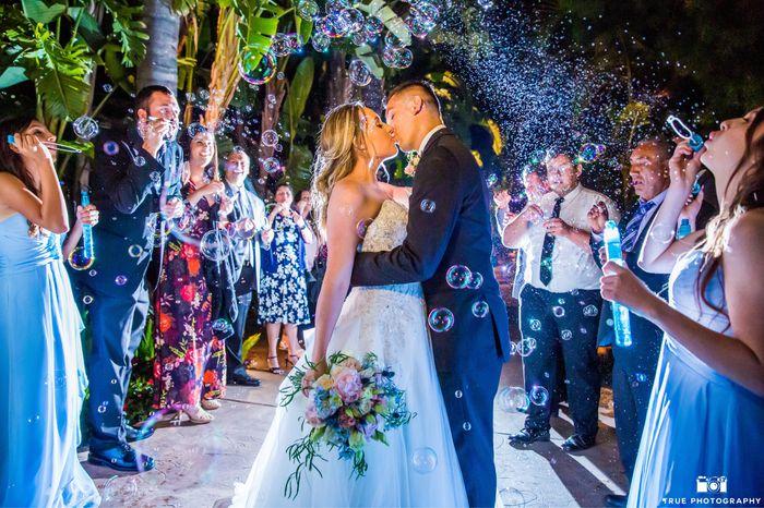 Pro Pics. My dream wedding was amazing 30