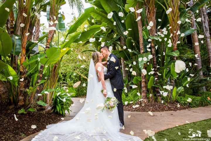Pro Pics. My dream wedding was amazing - 14