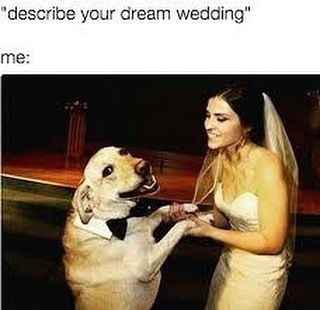 Favorite Wedding Memes? 10