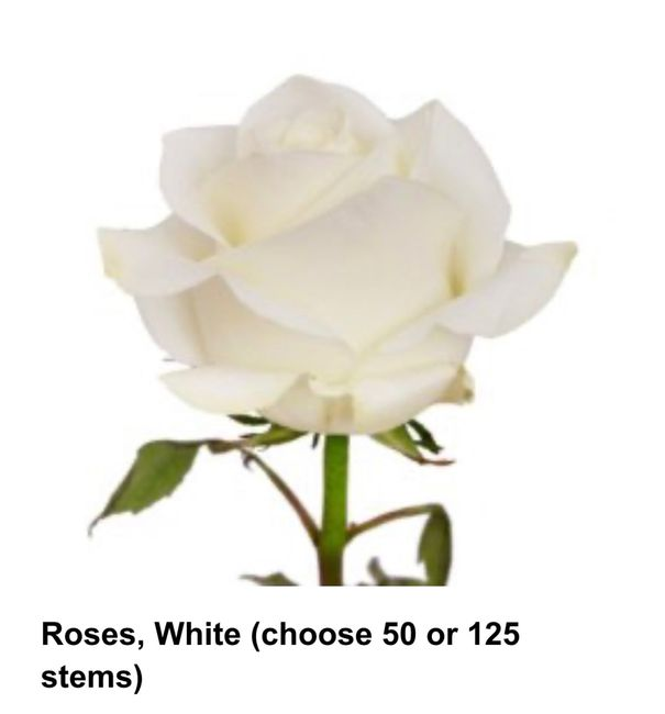 Wholesale bulk flowers - 2