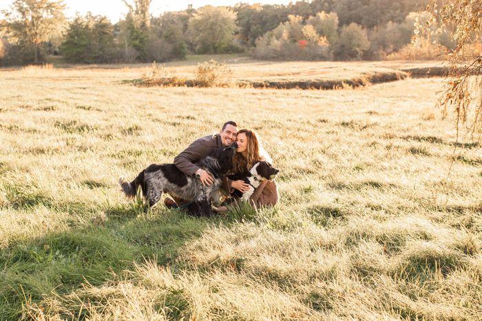 Engagement photos? - 1