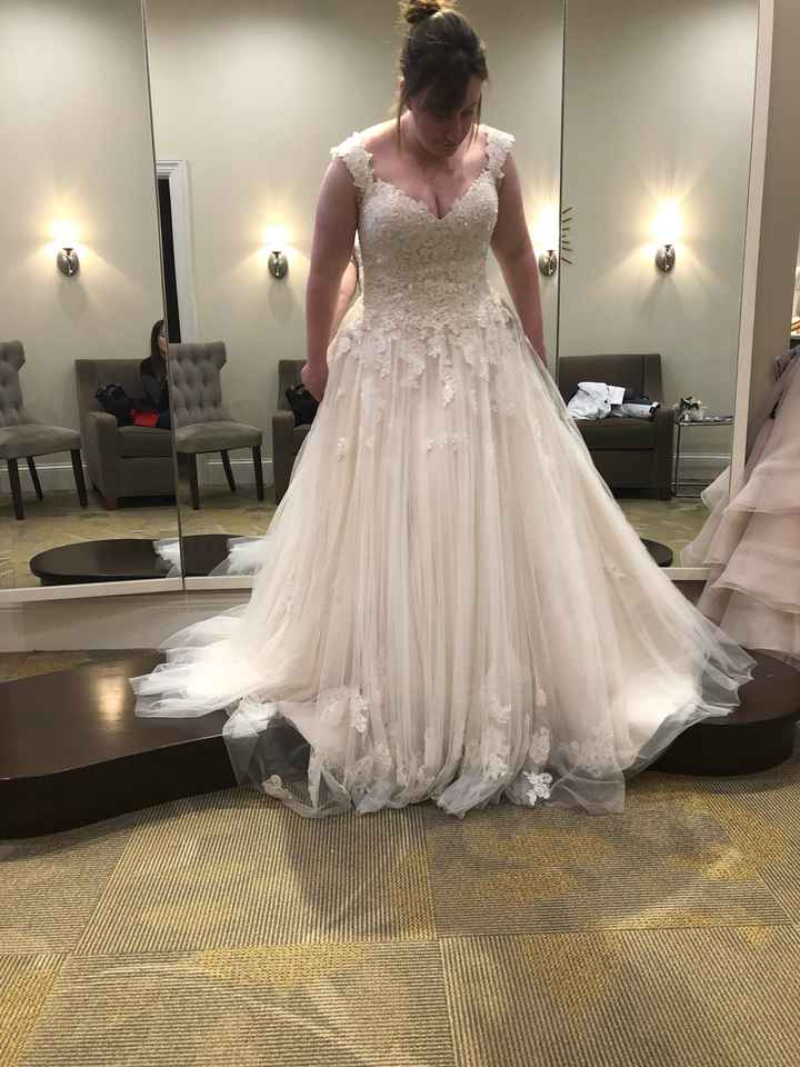 Buying the dress online - 1