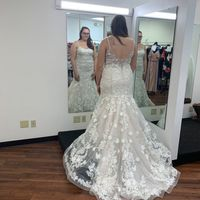 2Nd dress fitting complete!!!! - 2