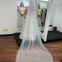 2Nd dress fitting complete!!!! - 4