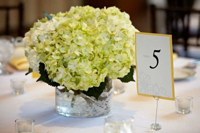 Best Color Centerpieces for my yellow walled venue? White/Yellow or something else?
