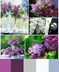 Color scheme 6