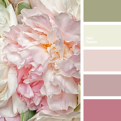 Color scheme 16