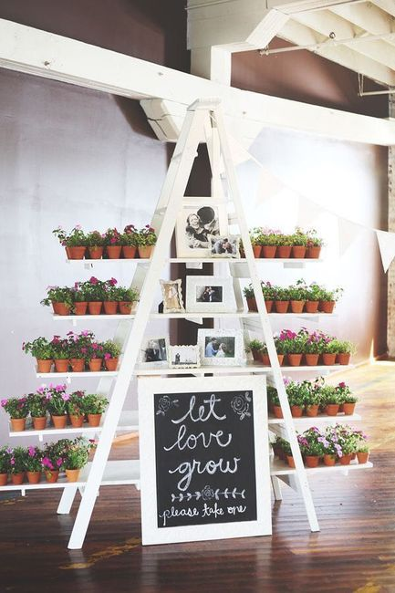 Potted Plant Centerpiecesfavors Weddings Planning Wedding