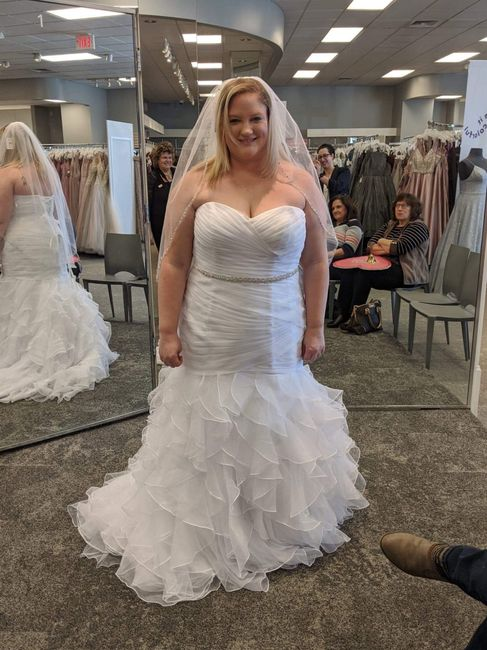 Let Me See Your Dresses!! 1