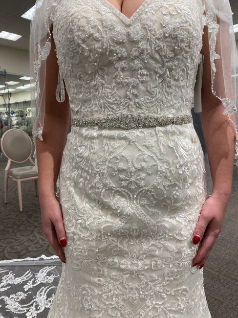 David's Bridal - is it good? i tried dresses on not expecting to find anything, and was surprised by what i found 1