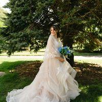 Dress and Veil