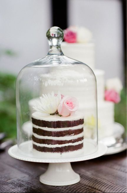 How to keep bugs off of cake! 1