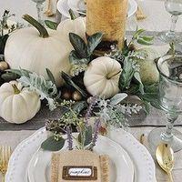 Fall theme decorations - 1