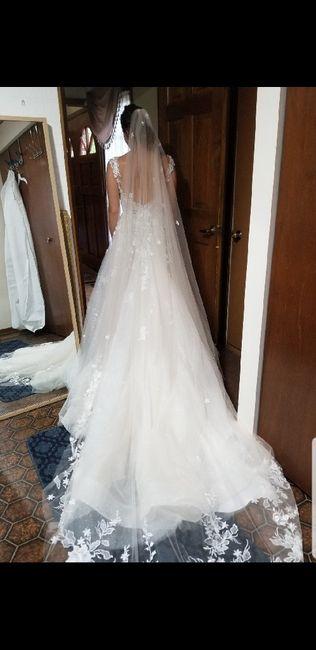 Help! Does my veil go with my dress? 1