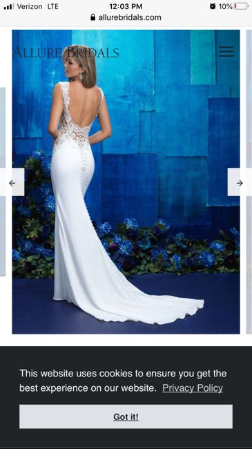 Undergarments for fit and flare and backless wedding dress - 2
