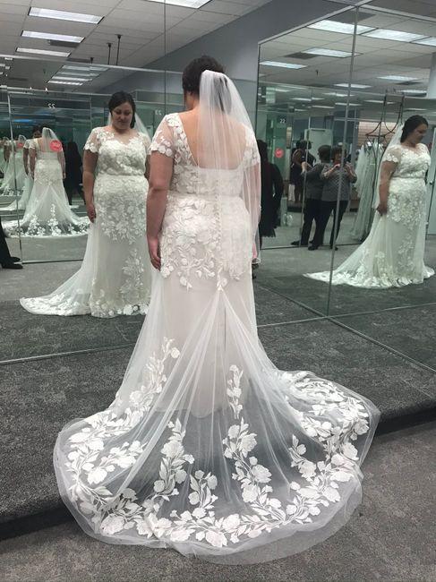 Plus Size Bride (davids Bridal/photography) 2