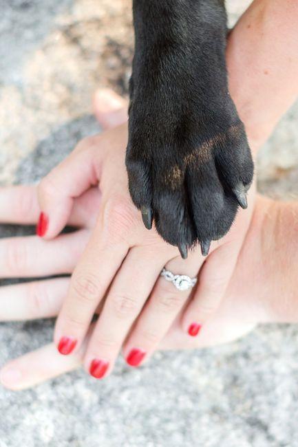 engagement pics - show me your favorite picture 5