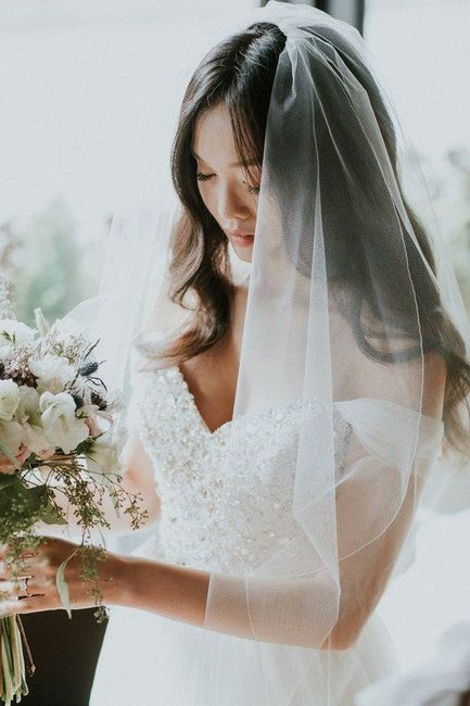 Wearing a Veil - Do or Ditch? 1