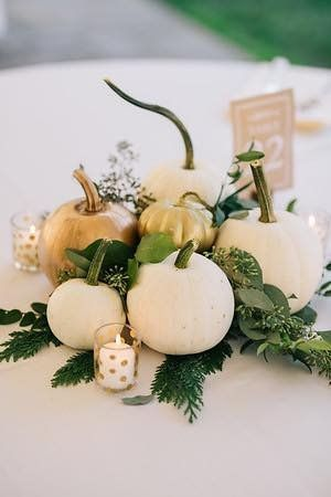 Fall classy pumpkin or White Ivory Theme 3