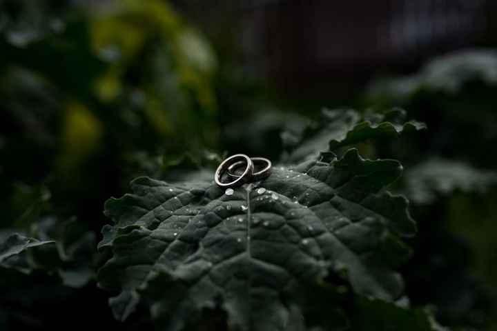 Matching Wedding Bands on Leaf