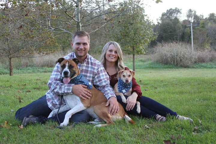 Engagement pics with our pup!!! - 1