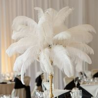 Centerpieces Help!!Feathers???