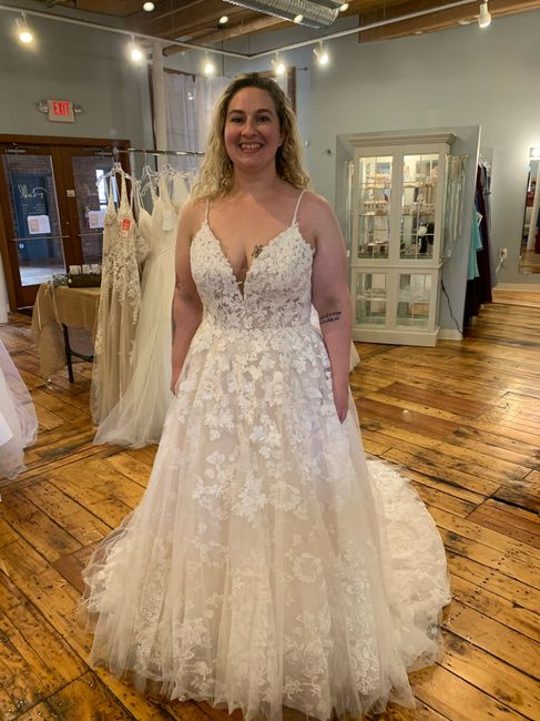 My Dress Came In! 1
