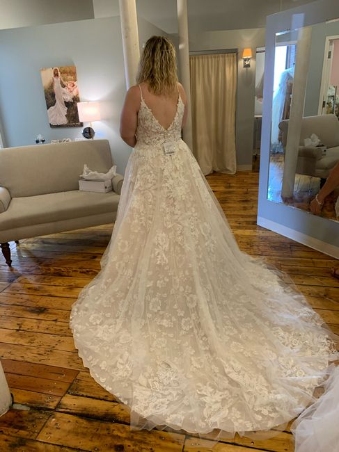 My Dress Came In! 2