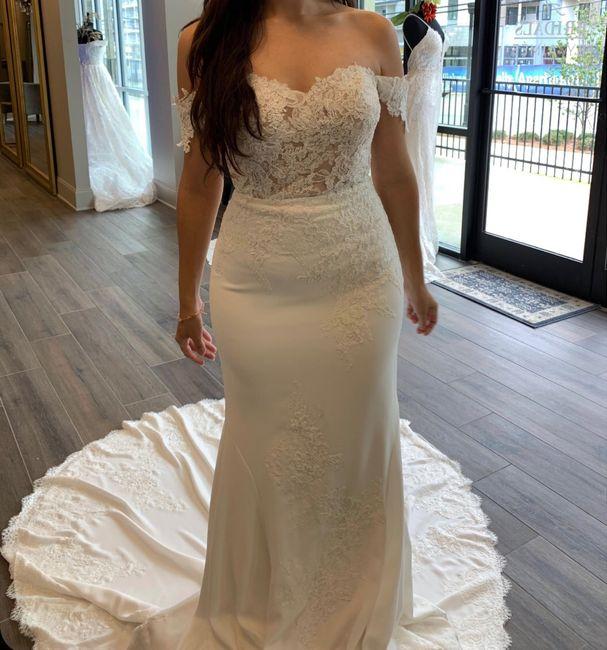 Wedding dress chronicles 1