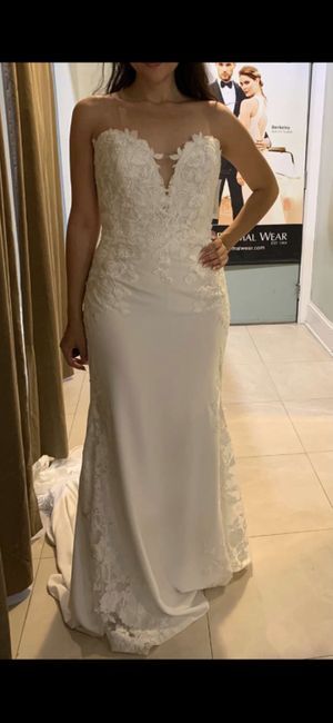 Wedding dress chronicles 2