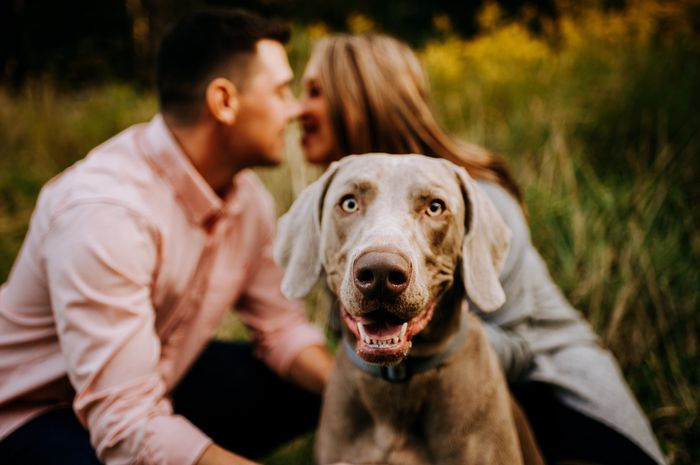 Our Engagement photo session! 3