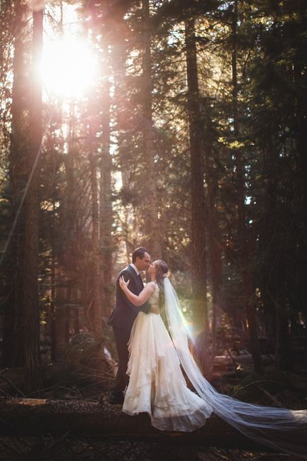 Forest Weddings:  Let's See Your Style Inspiration Pictures! 🌲📷 6