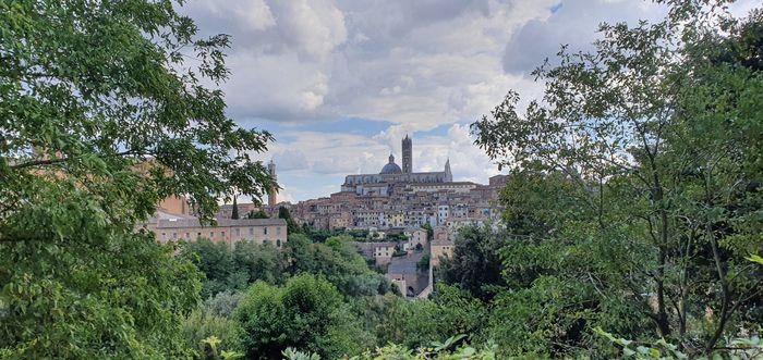 """Bam! Long over due wedding pics - Italy """"destination"""" diy Micro-wedding + virtual (27 Aug 2020) 13"""