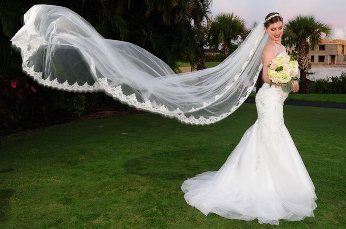 Wearing a Veil - Do or Ditch? - 1