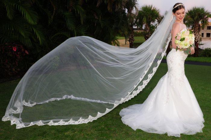 Show us your veils! - 1