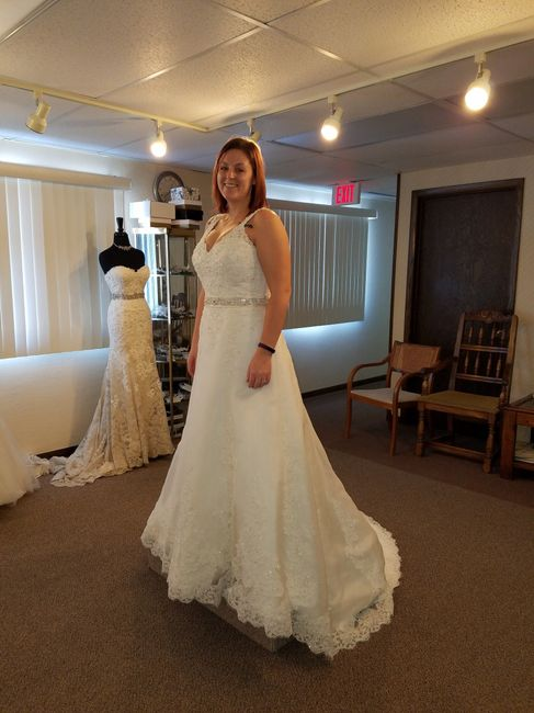 9761edda12a1d Crinoline? | Weddings, Wedding Attire | Wedding Forums | WeddingWire