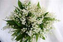 Flower ideas, HELP! Hayley where are you ? :) *pics*