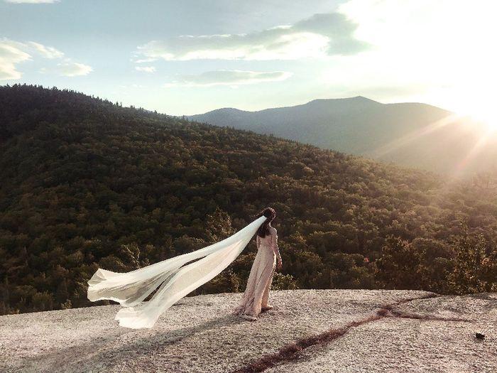 Wedding Veil...? - 1