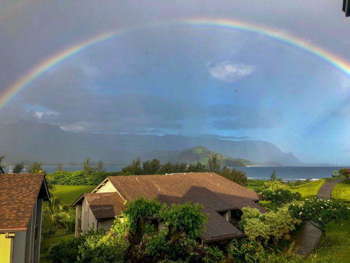 Maui pro bam 8