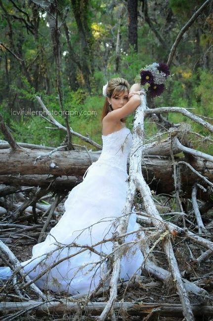 Where Can I Sell My Wedding Dress In Tampa Weddings Wedding