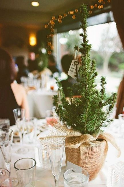 Christmas tree wedding decor? What do you think? 4