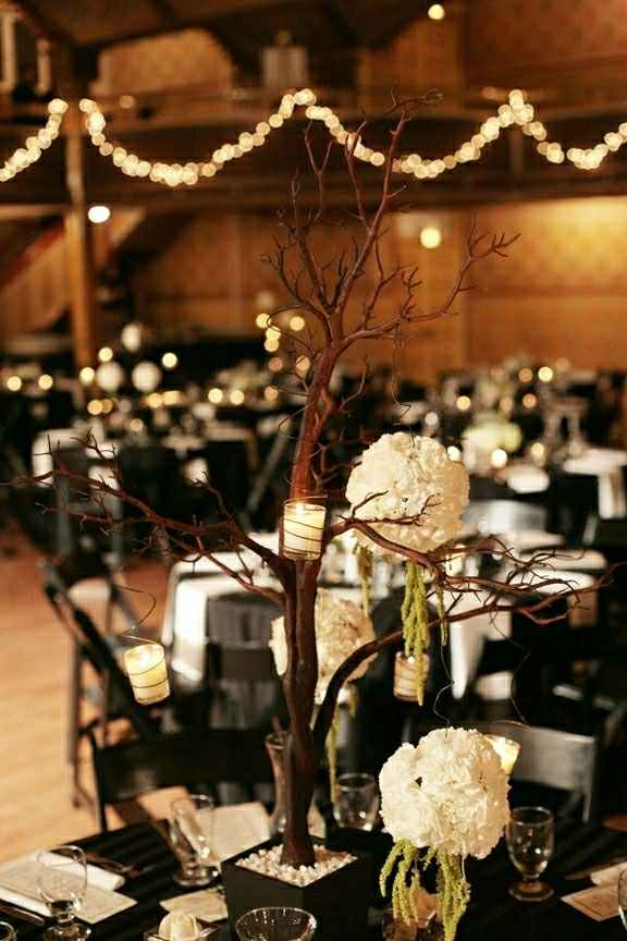 Need help planning an inexpensive gothic Victorian/rustic/chic destination wedding in Louisiana - 2