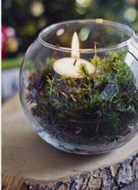 diy Enchanted Forest Themed Wedding Decorations 20