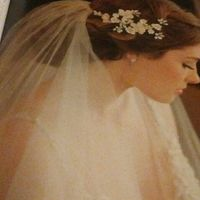 Half Up - Half Down Hair Accessories with Veil?