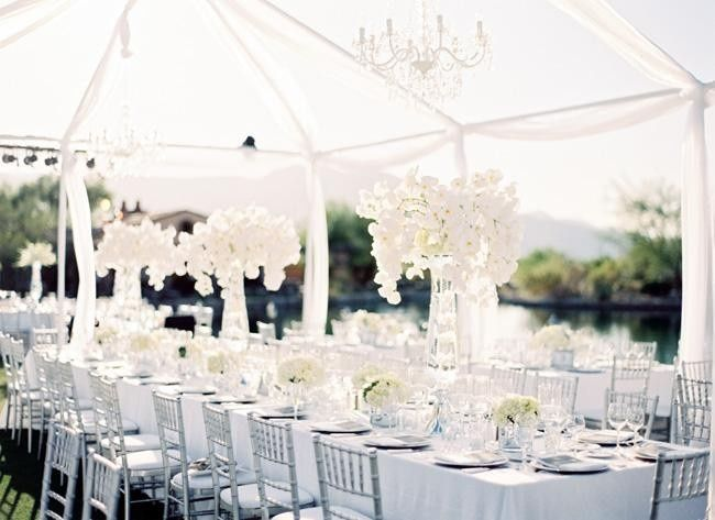 Cost Of Backyard Wedding venue or wedding tent? will it cost less. backyard wedding okay