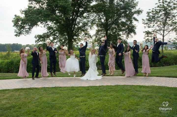 Bridal Party, Bride and Groom Picture